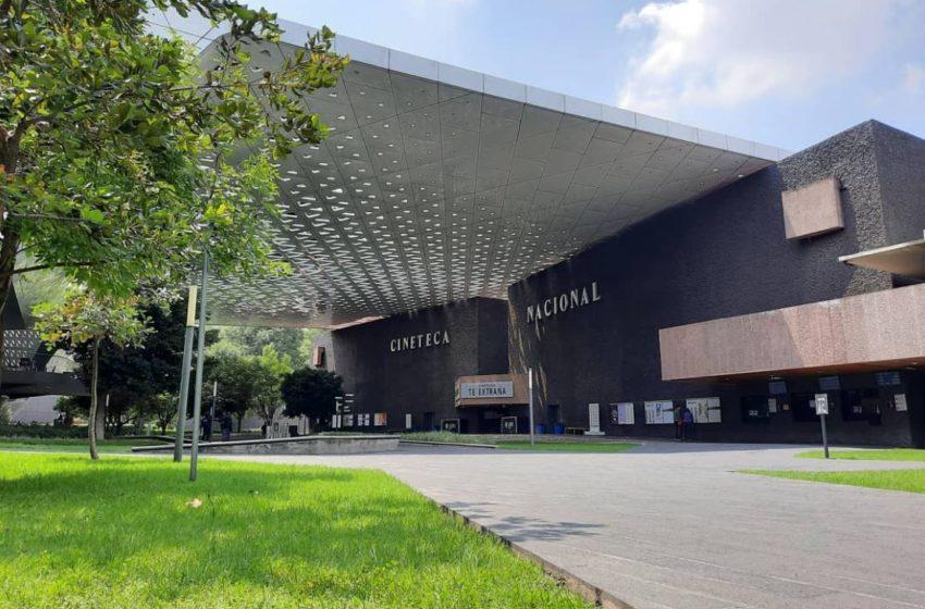 Muestra Internacional de Cine en la Cineteca Nacional: cartelera
